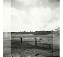 the field. Photographic Print