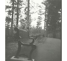 the bench. Photographic Print