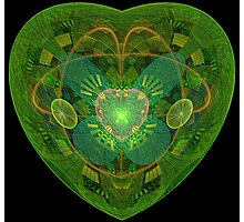 JULIA'S BLOSSOMING HEART Photographic Print