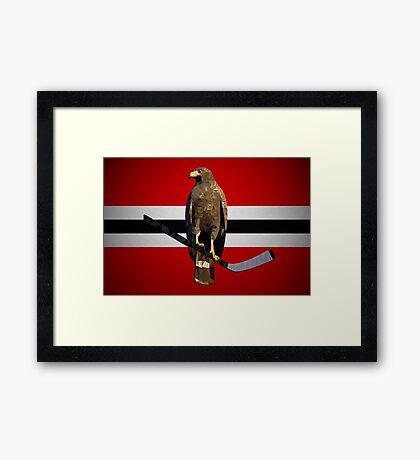 Polyhawk Framed Print