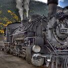 Durango & Silverton Narrow Gauge Train by rjcolby