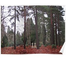 Lost Graves - Brookwood Cemetery Poster