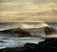 Early Morning Barrels by Kyle  Rodgers