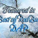 TBORB Winter Feature Banner by rocamiadesign