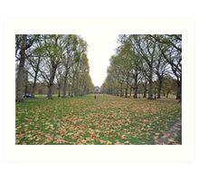 Buckingham Palace lawns Art Print