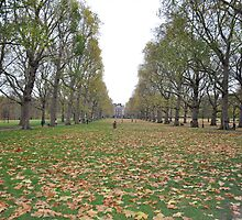 Buckingham Palace lawns by Mudit's Photography