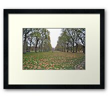 Buckingham Palace lawns Framed Print