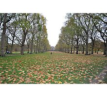 Buckingham Palace lawns Photographic Print