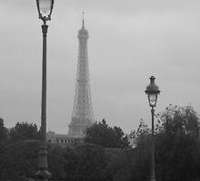 Eifel Tower, Paris by nicky83