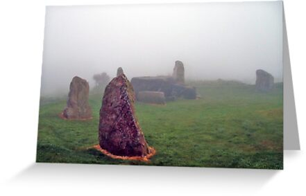 Living Stones by Stuart  Fellowes
