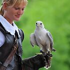 girl with falcon by neil harrison