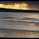 Sunset Surfing at Lahinch Beach, County Clare, Ireland by Noel Moore Up The Banner Photography