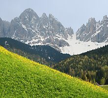 Two seasons in Dolomites by sorinab