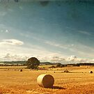 Rural Nature Countryside Scenic Landscape Ireland by Noel Moore Up The Banner Photography