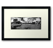 Street Photography Pano Framed Print