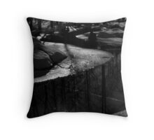 The last bends of its quiet end Throw Pillow
