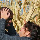 In the Corn Fields by rocperk