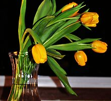 Bunch of yellow tulips by mltrue