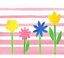 Baby Pink Stripes Flowers Photographic Print