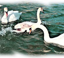 Two's Company! Three's a Crowd by Graham Southall