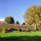 Early Autumn Farm, Connecticut by Alberto  DeJesus