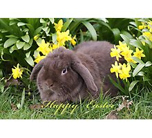 """""""Jack"""" The Easter Bunny Photographic Print"""