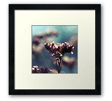 the whispers of spring Framed Print