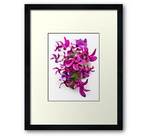 Purple flower chaos Framed Print