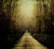 Country Lane by Nicola Smith