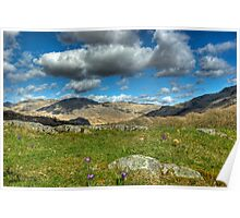 A Hint Of Spring In The Duddon Valley Poster