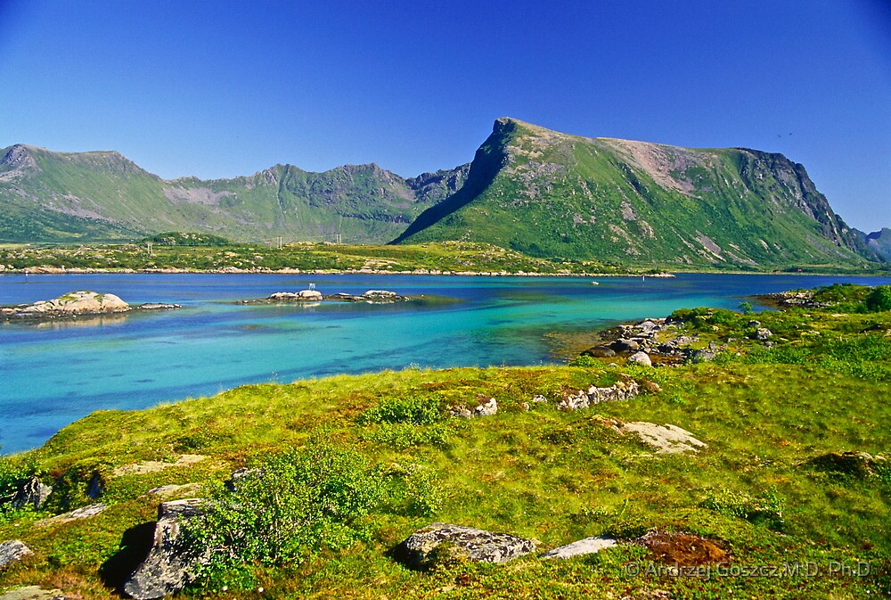 The Magic of Colors  -  Lofoten Islands . Norway . by Brown Sugar . Favorites: 2 Views: 507 . Thank you !!!!   dziękuję !!! by © Andrzej Goszcz,M.D. Ph.D