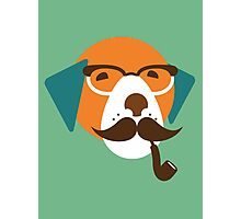 Cute Beagle Dog Hipster Animal With Pipe Photographic Print