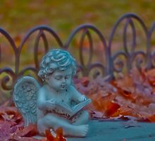 Angel looking over Rajah by DBGuinn