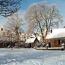 Winter by Nederland Panorama
