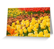 Tulipmania Greeting Card