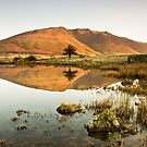 Warm Reflections by Brian Kerr