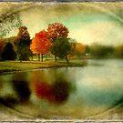 A memory ©  by Dawn M. Becker