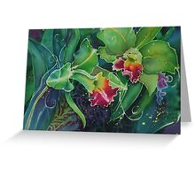 Orchid Series 12 Greeting Card