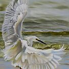 Snowy Egret Landing On The Shore by Phyllis Beiser