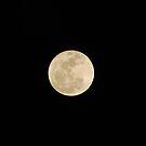 full moon by Michael Lane