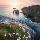 Lands End by Michael Breitung