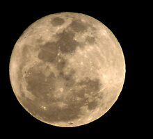 Super Moon (3/19/2011) by Virginia N. Fred