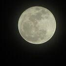 Super Moon 2011 by Jaclyn Hughes
