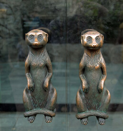 Meerkat Door Handles by SuddenJim
