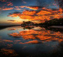 Glorious Morning by Chris Lofqvist
