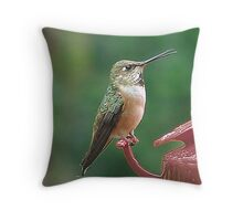I Say...! Throw Pillow