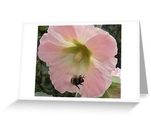 Flight of the Bumble Bee 2... Greeting Card