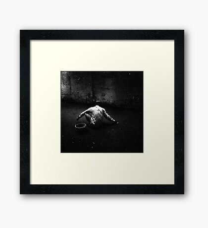foundation, phnom penh, cambodia Framed Print