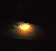 """""""Super Moon"""" by Lynn Bawden"""