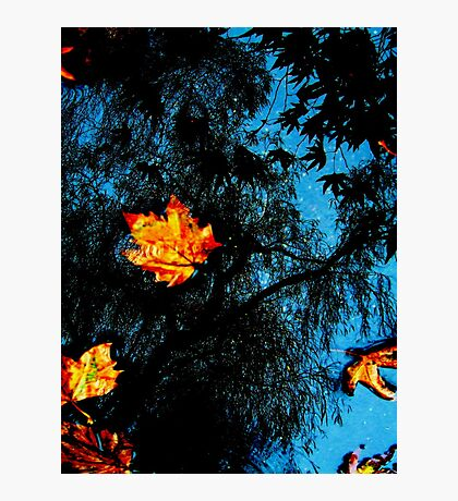 Afloat over Time Photographic Print